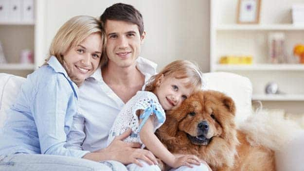 Wills & Trusts dog-young-family Direct Wills Pinner